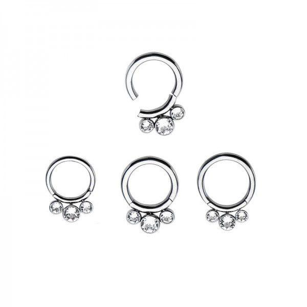 Hinged Segment Piercing Rings